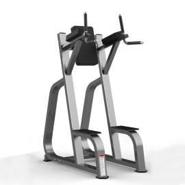 Máquina Elevación de Piernas - Leg Raise